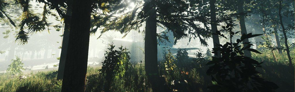 Open-world survival horror The Forest is coming to PS4