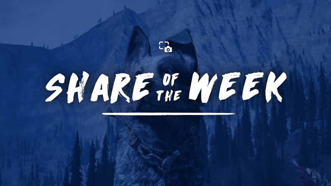 Share of the Week: Far Cry 5