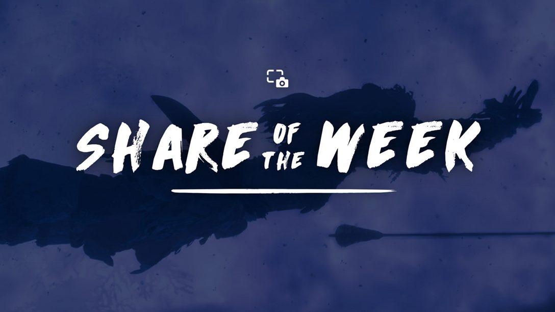 Share of the Week: Midair Shots