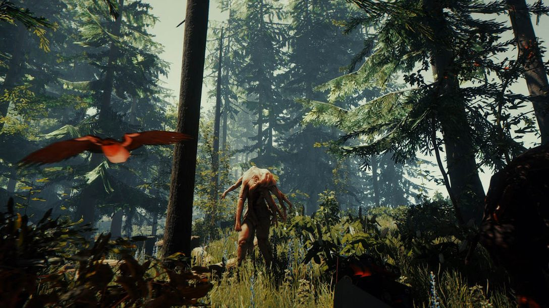 The Forest Launches November 6 on PS4