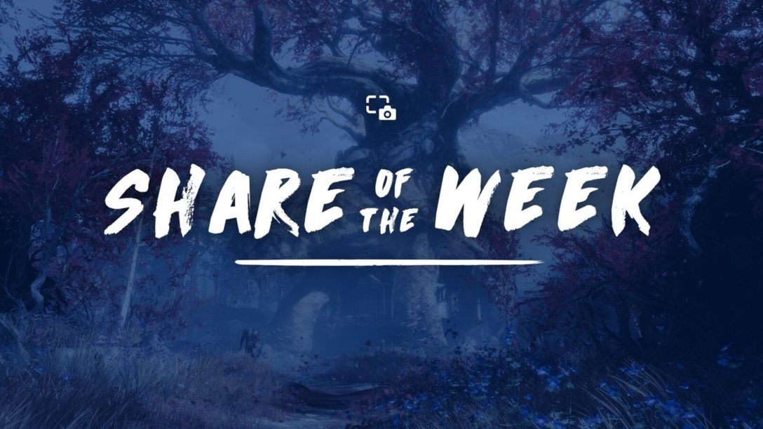 Share of the Week: Spring