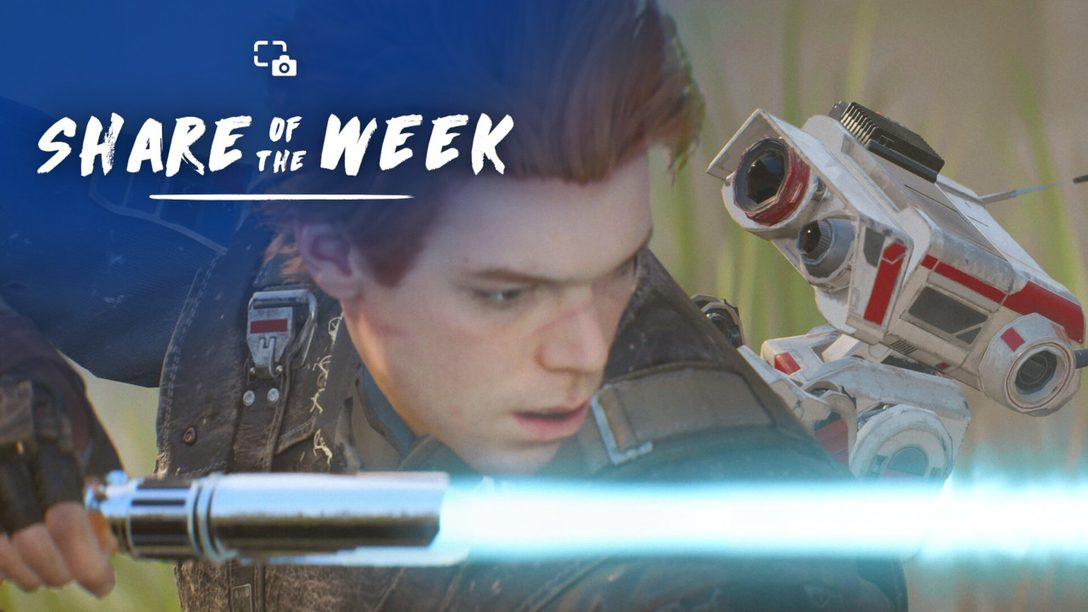 Share of the Week – Teamwork