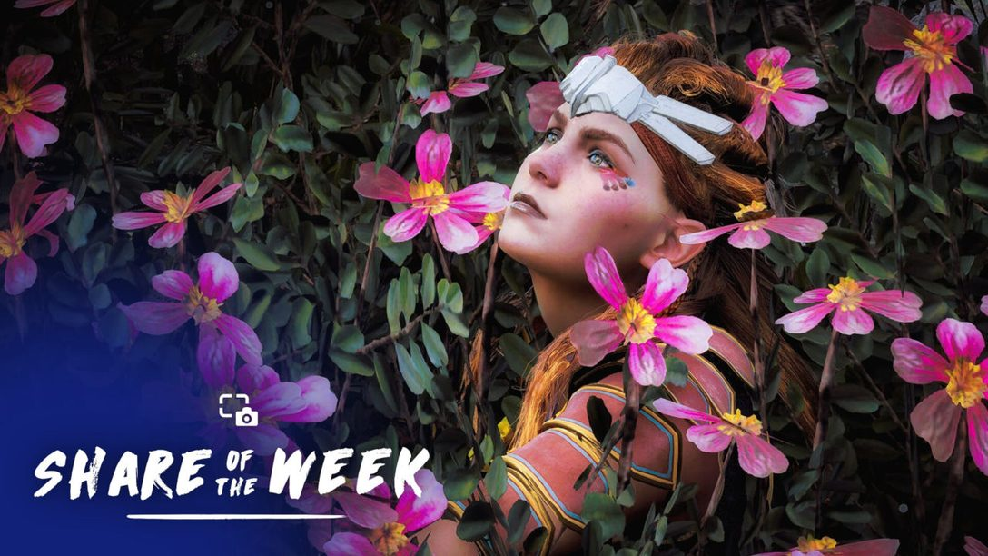 Share of the Week – In Bloom