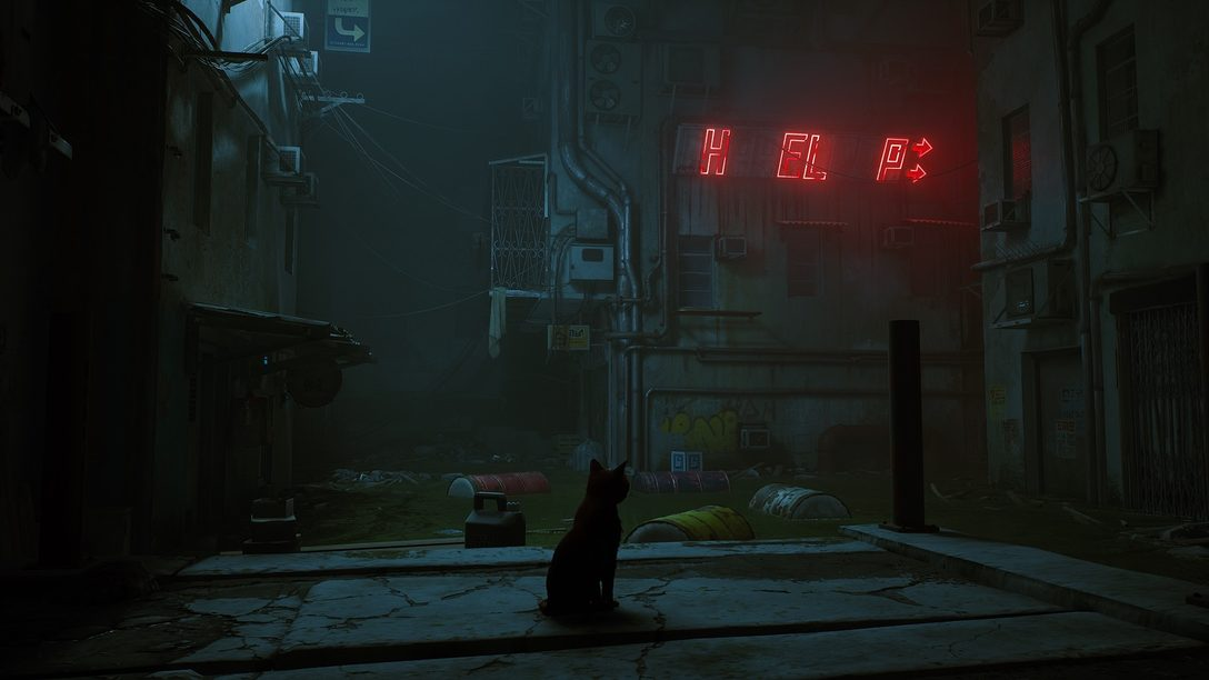 An in-depth look into the mysterious, futuristic world of Stray