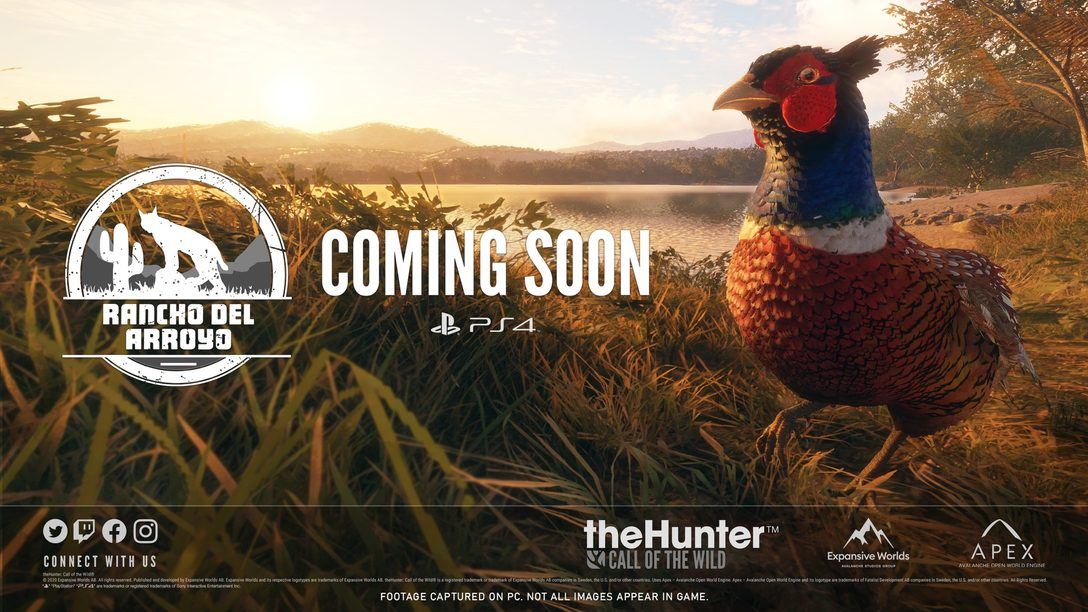 theHunter: Call of the Wild – 7 tips to master desert hunting in Rancho del Arroyo