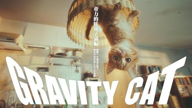 『GRAVITY DAZE 2』の「重力猫映像」が広告賞「ONE SHOW 2017」でGold Pencilを受賞!
